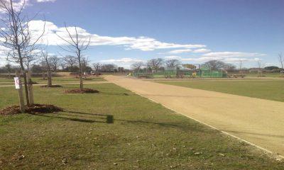 Maîtrise D'oeuvre Complète Pour L'aménagement Du Parc De Jouandeou – Haut-Mauco (40)